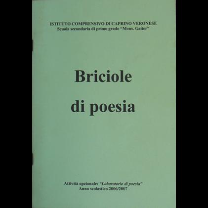 Introduzione a Briciole di poesia
